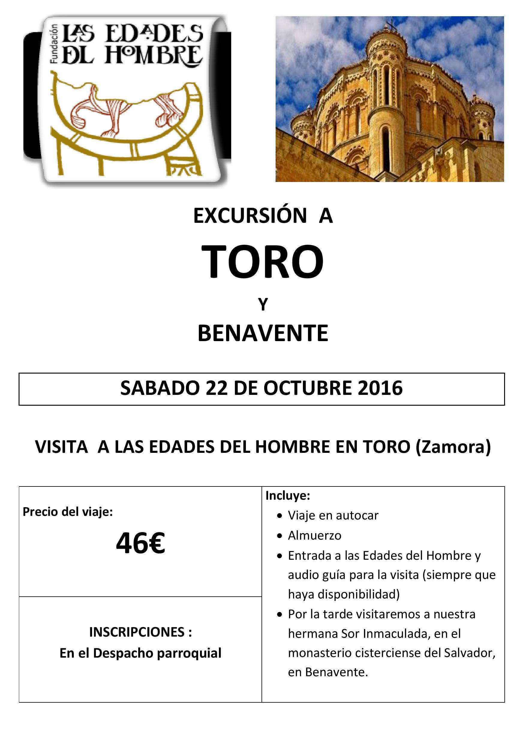 cartel_visita_toro_dina3-page-001